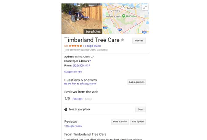 Google my Business for Timberland Tree Care