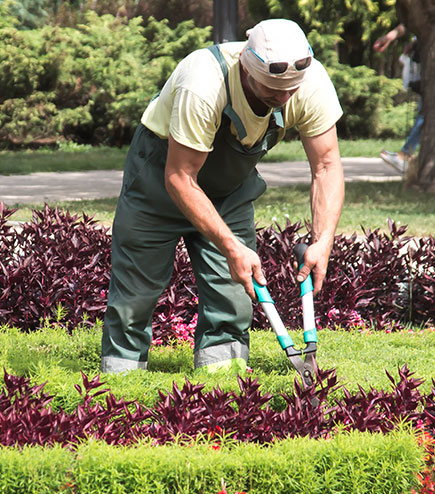 landscaper website seo